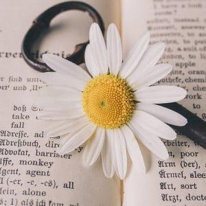 Apprendre l'anglais lors d'un séjour en France, c'est possible !